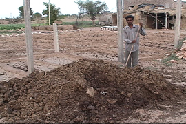 Cowdung used as organic fertilizer 'by default'